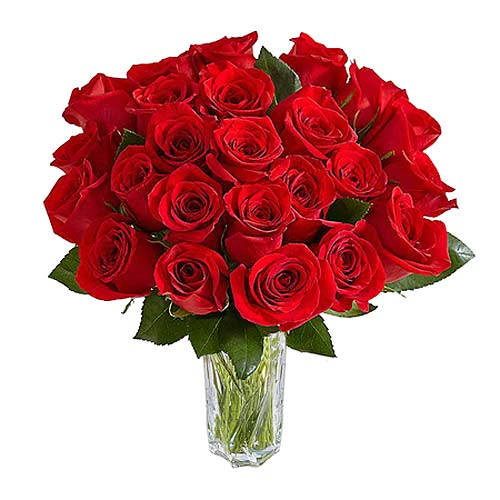 Two Dozen Red Roses Bouquet - India Delivery