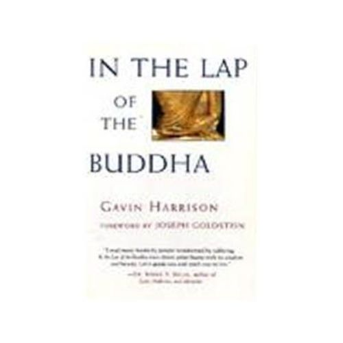 In the Lap of the Buddha by Gavin Harrison