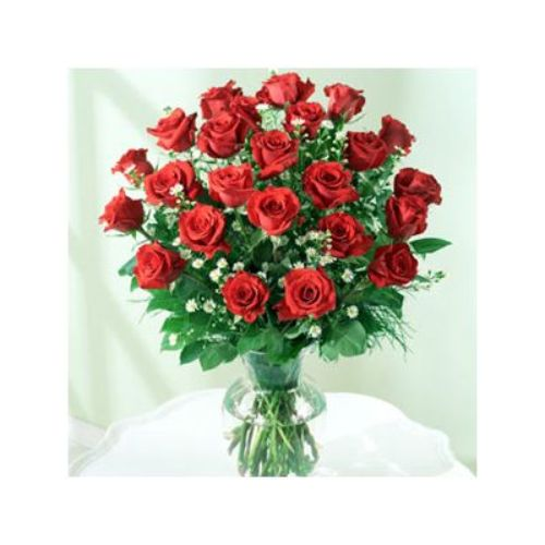 Elegant Two Dozen Roses- Haiti Delivery Only