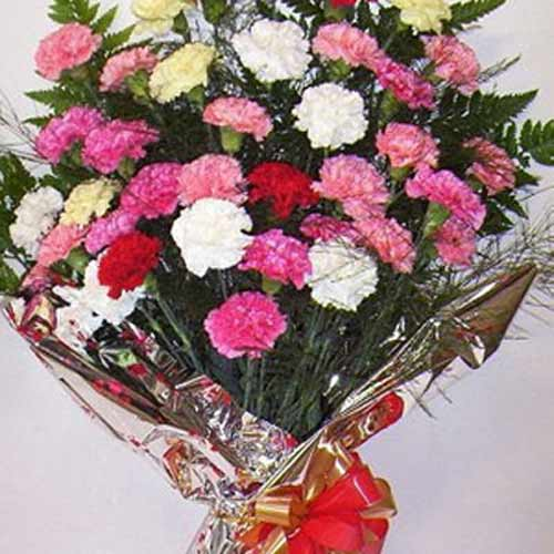Carnation Carnival - Austria Delivery Only