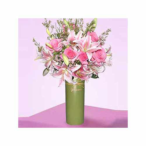 Pink Profusion - Russia Delivery Only