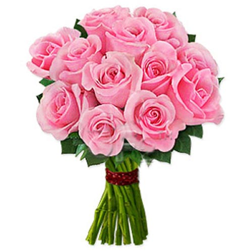 One Dozen Pink Roses - Portugal Delivery Only