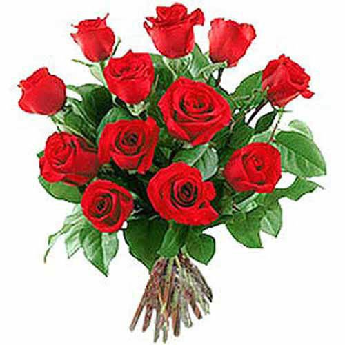 12 Long Stem Red Roses - Israel Delivery Only