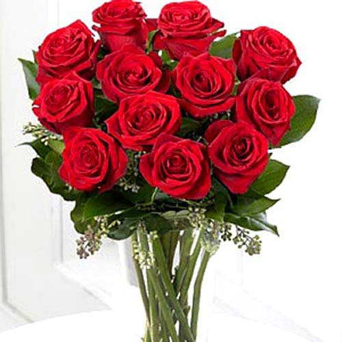 12 Red Long Stem Roses - Switzerland Delivery Only