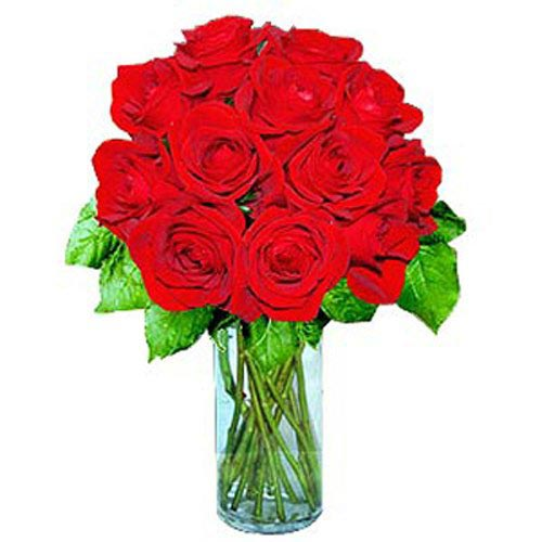 12 Short Stem Red Roses - Kazakhstan Delivery Only