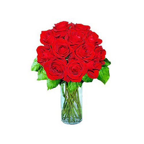 12 Short Stem Red Roses- Tajikistan Delivery Only
