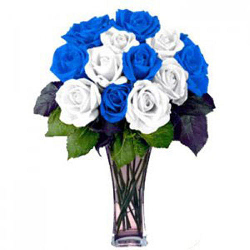 12 White and Blue Roses - Croatia Delivery Only