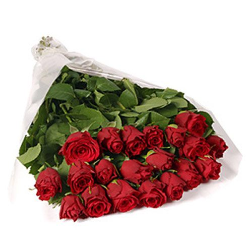 20 Red Roses - Belgium Delivery Only