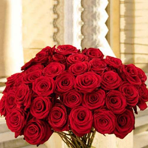 50 Red Roses - Argentina Delivery Only