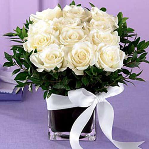 12 white roses in a vase - Jordan Delivery Only