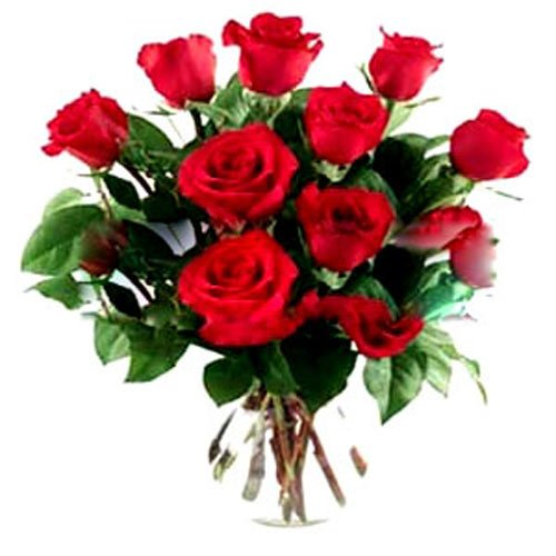 15 Red Rose Bouquet - Romania Delivery Only